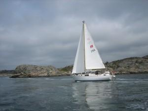 Rasmus255