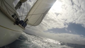 En sån segling vi fick denna dag