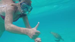 Att simma med sköldpaddor är svårslaget