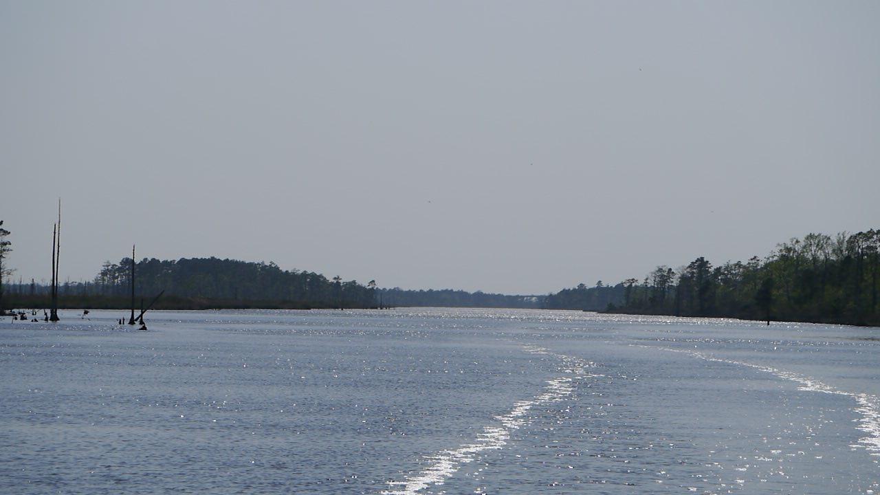 Vi är rätt ensamma på Alligator River
